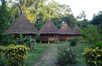 Manu Nationalpark